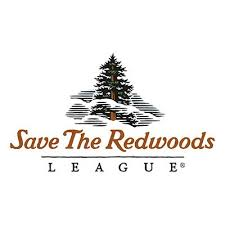 Save the Redwoods -Green Impact
